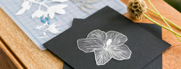 Cut Paper Art | Maude White